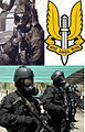 BRITISH SAS ARMED FORCES POSTER.jpg