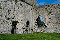 Ballybeg Priory St. Thomas Cloister NE Corner 2012 09 08.jpg