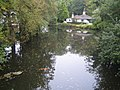 Basingstoke Canal near Frimley Green - geograph.org.uk - 574096.jpg