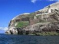 Bass Rock Lighthouse Castle Gannets.jpg