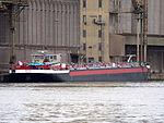 Bauke (ship, 2010) - ENI 04808410, Port of Antwerp.JPG