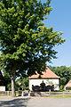 Baum vor Ehrenmal und Kirche Steinwedel.jpg