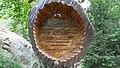 Baumschnitzerei - panoramio.jpg