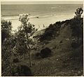Beach scene from Camping trips on Culburra Beach by Max Dupain and Olive Cotton (12825682504).jpg
