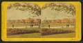 Beauties of the soldiers' home, Dayton, O, by Gates, G. F. (George F.) 2.png