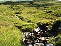 Beinn Dronaig hillside - geograph.org.uk - 1420229.jpg
