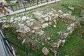 Beit-Sahour-Shepherds-Catholic-085.jpg