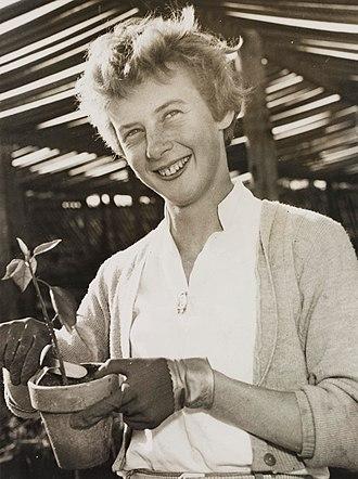 Betty Cuthbert - Betty Cuthbert c. 1950s