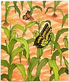 Big Red Barn (8) illustrated Felicia Bond and written by Margaret Wise Brown.JPG