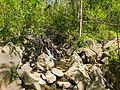 Billy Goat C Trail 7.jpg