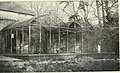 Bird notes (1902) (14752949894).jpg