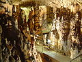Biserujka Höhle 2007 Kroatien 112.jpg