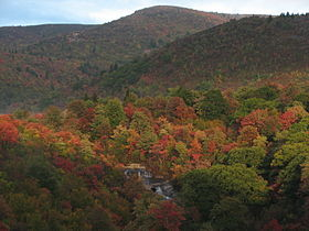 Black Balsam Knob in autumn.JPG