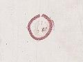Blatta orientalis (YPM IZ 098944).jpeg