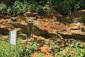 Bochum - Geologischer Garten (15) 03 ies.jpg