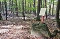 """Boden Grenzfelsen """"Breite Loog"""" im Naturpark und Biosphärenreservat Pfälzerwald - panoramio (1).jpg"""