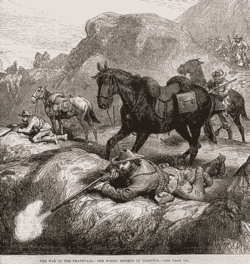 Boers in action (1881).