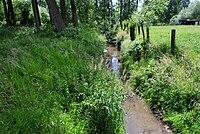 Borchtlombeek (Roosdaal, Belgium) - Lombeek creek.jpg