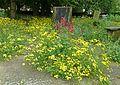 Bradford Cathedral graveyard (9045447908).jpg