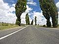 Braidwood NSW 2622, Australia - panoramio (62).jpg