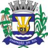 Brasao Chapadaodosul.png
