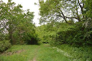 Brickfield and Long Meadow
