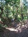 Bridleway in Blackheath Forest near Albury - geograph.org.uk - 188429.jpg