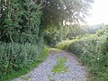 Bridleway near Lower Lawn House 2 - geograph.org.uk - 909274.jpg