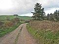 Bridleway near Thorpe Bulmer Farm - geograph.org.uk - 279020.jpg