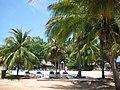 Brisas Del Caribe - panoramio - Dmitry Rozhkov.jpg