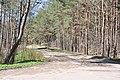 Buļļu iela Kleistu mežā pie Lāčupes kapiem, Rīga, Latvia - panoramio.jpg