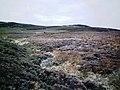 Burn NE of Meall Dubh - geograph.org.uk - 1108019.jpg