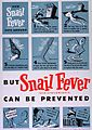 But snail fever (schistosomiasis) can be prevented (6798333482).jpg