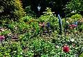 Butchart Gardens - Victoria, British Columbia, Canada (29151913352).jpg