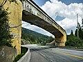 CN Railway overpass near Pine Pass -a.jpg