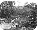 COLLECTIE TROPENMUSEUM Planter of opzichter te paard bij een brug op een koffieplantage Java TMnr 60009206.jpg