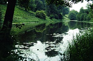 Vauncey Harpur-Crewe - Calke Abbey grounds today are a haven for wildlife