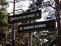 Camino Schmidt- Cruce con Circuito de Fondo.jpg