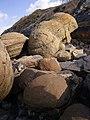 Cap Gris-Nez (6517994351).jpg
