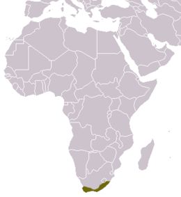 Cape Genet area.png