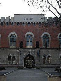 Castelul Huniazilor.jpg