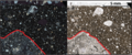 Cataclasite Matrix in Thin Section.png