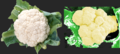 Cauliflower vs sintesis.png