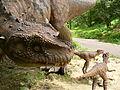 Ceratosaurus, DinoPark Bratislava.jpg