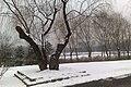 Chaoyang, Beijing, China - panoramio (6).jpg