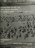Characters of age, sex and sexual maturity in Canada geese (1962) (19969380033).jpg
