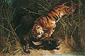 Charles VERLAT - Buffle surpris par un tigre - Musée des Augustins - 2004 1 199.jpg
