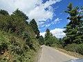 Chelela to Paro road views during LGFC - Bhutan 2019 (115).jpg