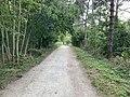 Chemin près Lac Saint Mandé - Paris XII (FR75) - 2021-08-16 - 3.jpg