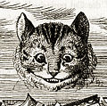 Cheshire Cat appearing (detail).jpg